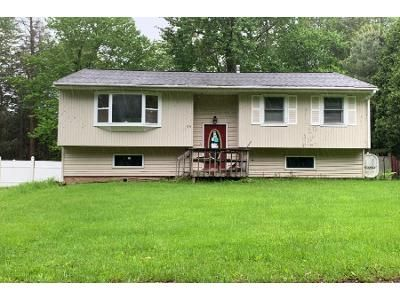 Preforeclosure Property in Loch Sheldrake, NY 12759 - Aster Rd