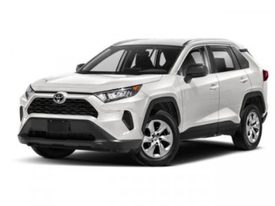 2019 Toyota RAV4 LE (Magnetic Gray Metallic)