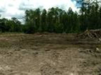 Land for Sale by owner in Hastings, FL