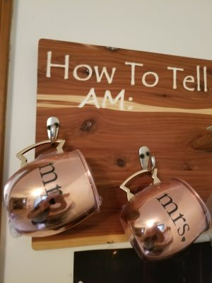 Mr. And mrs. Moscow mule cups