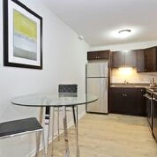 Remodeled Unit - Reverb Oak Lawn with SS appl., Granite Counter tops, In-Unit W/D