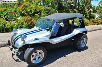 Beautiful Meyers Manx CLONE
