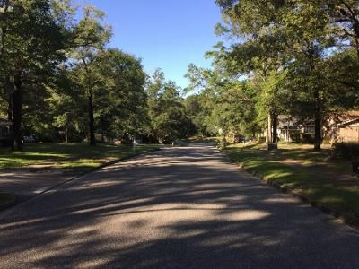 3 Bed 2 Bath Preforeclosure Property in Mobile, AL 36618 - Princeton Woods Dr W