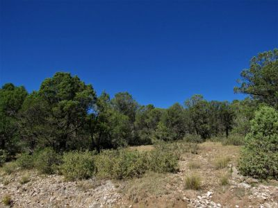 2.01 acres combined in 23 & 29 Calcite Dr. Timberon, NM