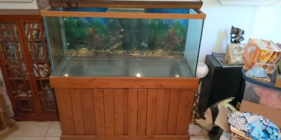 50 Gallon Aquarium with Solid Wood Cabinet and Filtration Pumps