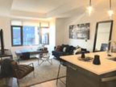 Pet Friendly, South End One BR/One BA