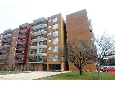 2 Bed 2 Bath Foreclosure Property in Calumet City, IL 60409 - Park Ave Apt 336