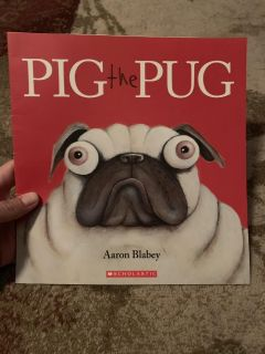 Pig the pug - ppu (near old chemstrand & 29) or PU @ the Marcus Pointe Thrift Store (on W st)