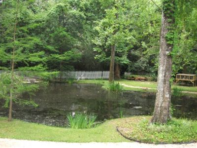- $600 A LITTLE PIECE OF PARADISE (GREENWELL SPRINGS ROAD)