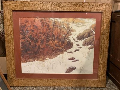 Large Bear print framed picture