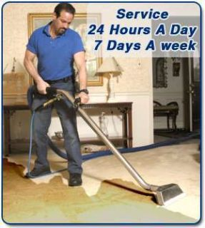 Master Service Pro Carpet Cleaning, Water Damage, Mold Removal Lake Zurich, Long