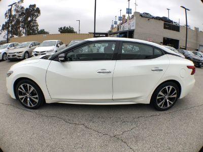 2018 Nissan Maxima SV (Pearl White)