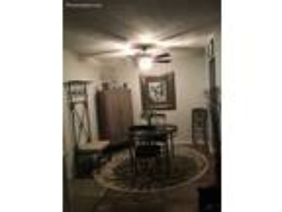 Roommate wanted to share One BR 1.5 BA Condo...