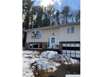 3 Bed 3 Bath Foreclosure Property in Earlton, NY 12058 - Deyo Rd