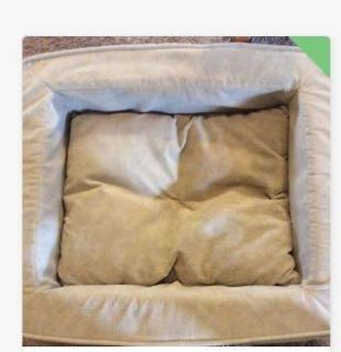 $5 if porch pick up. Dog s bed, my dog doesn t like it