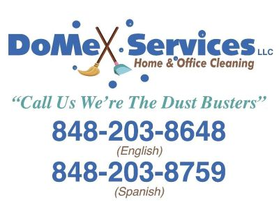 DOMEX SERVICES LLC