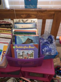 Hundreds more books for a classroom literacy library