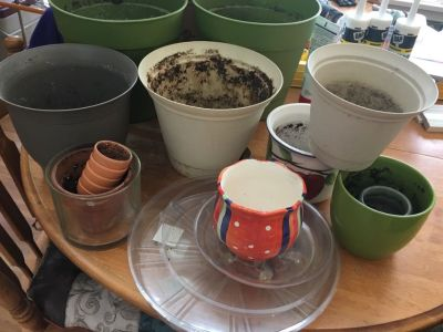 Plant pots and trays