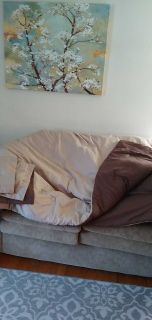 Queen dark brown and tan comforter with two shams