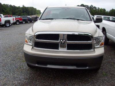 2010 Dodge RSX ST (TAN)