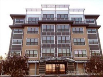 Apartment Rental - 445 Willard Street Apt