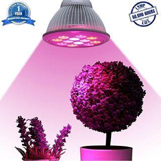 Plant Grow Lights - GrowOKC of Oklahoma City