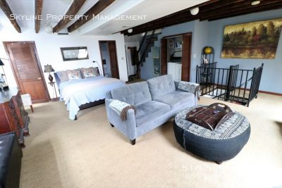 Large Sunny Society Hill Furnished Bi-Level Apartment