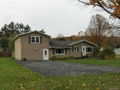 Foreclosure - Lakeview Drive Ext, Honeoye NY 14471