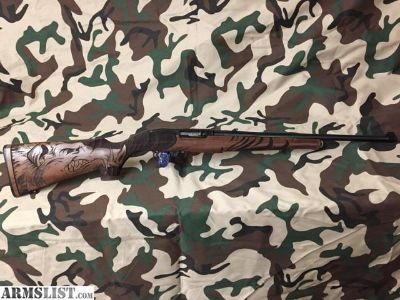 For Sale: Talo Wild Hog Ruger 10-22