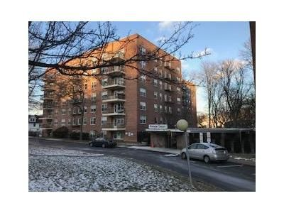 1 Bed 1 Bath Foreclosure Property in Spring Valley, NY 10977 - S Cole Ave Apt Le