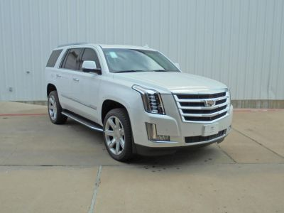 2019 Cadillac Escalade Luxury (Crystal White Tricoat)