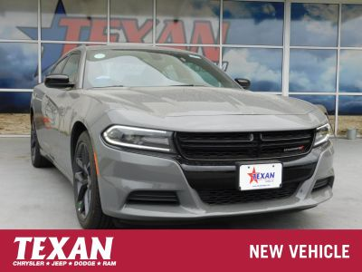 2019 Dodge Charger SE (Destroyer Gray Clearcoat)