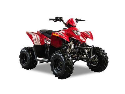 2018 Hisun Axis 110 Sport ATVs Sturgeon Bay, WI