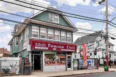 15 Innis Street Staten Island, multifamily/mixed-use