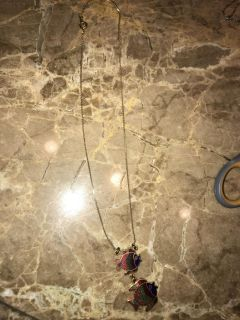 Two fish necklace