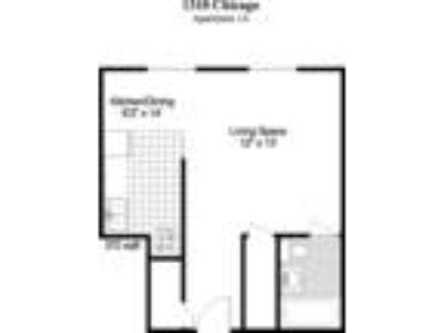 1310 Chicago Apartments - Studio