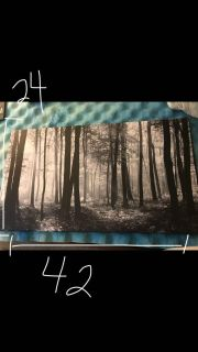 Tree canvas wall art picture