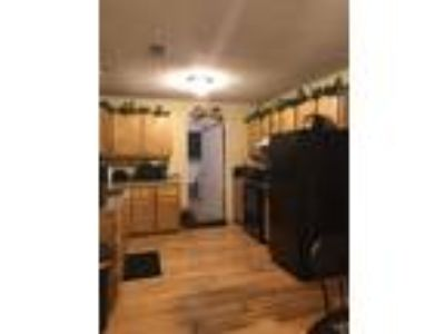 Roommate wanted to share Three BR 1.5 BA Condo...