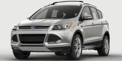 2014 Ford Escape SE (Ingot Silver Metallic)