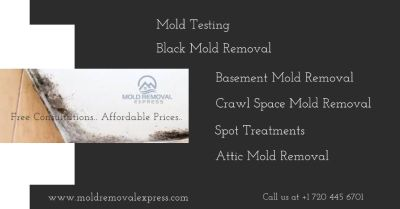 Mold Testing Service - Mold Removal Express