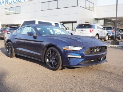 2019 Ford Mustang (blue)