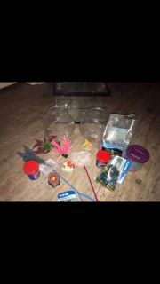 Betta fish start up supplies
