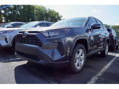 2019 Toyota RAV4 (01g3/Magnetic Gray Metallic)