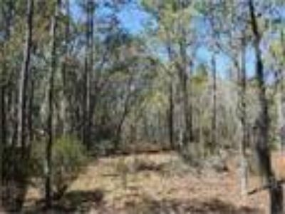 Land for Sale by owner in Bronson, FL