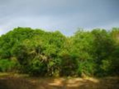 Land for Sale by owner in Ruskin, FL