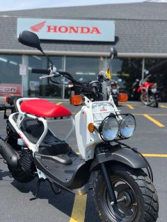 2018 Honda Ruckus Scooter Aurora, IL