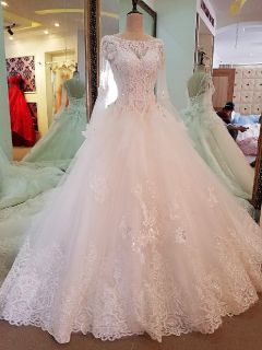 Addison's Princess Appliqué Long Sleeve Wedding Gown Without Train