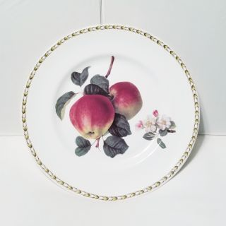 Hooker's Fruit by Queen's Plate - Apple - The Royal Horticultural Society Collection - Never Used