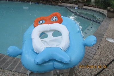 Child-Sized Swimming Pool Float - Gently Used