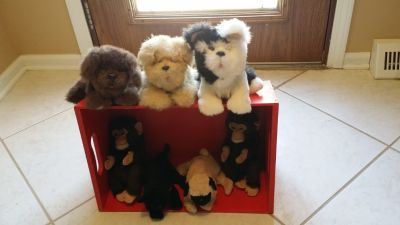 FurReal Friends - Kittens, Puppies, Monkeys